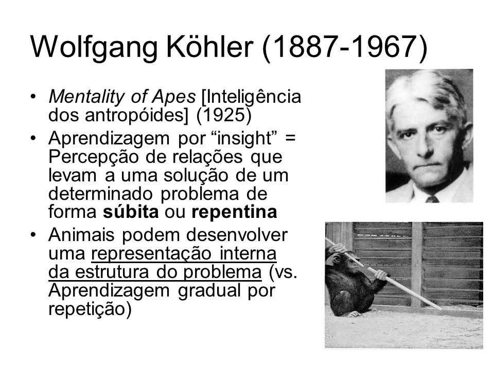 Wolfgang Köhler (1887-1967) Mentality of Apes [Inteligência dos antropóides] (1925)